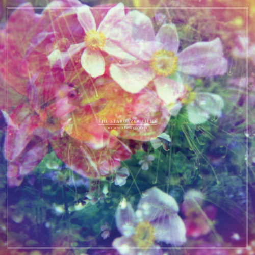 The Stargazer Lilies – 'We are the Dreamers'