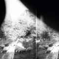 Godspeed You! Black Emperor – Asunder,Sweet and Other Distress (Constellation)