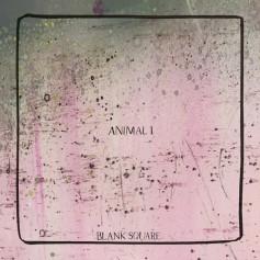 Blank Square – Animal I