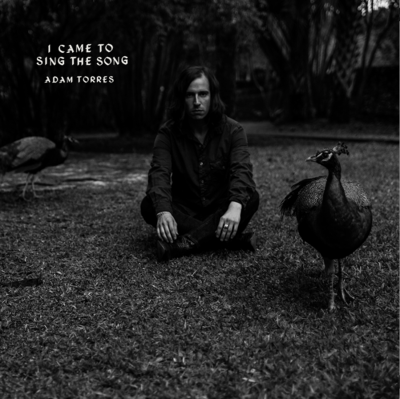 Adam Torres – 'I Came to Sing the Song'