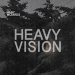 Heavy Vision