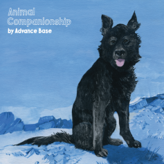 Advance Base – Animal Companionship