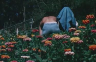"The Babe Rainbow – ""Eureka"" / ""Alan Chadwick's Garden"""