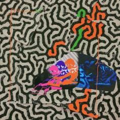 Animal Collective – Tangerine Reef