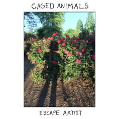 Caged Animals – Escape Artist
