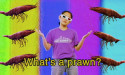 """Superorganism – """"The Prawn Song"""""""