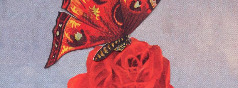 "Sam Evian feat. Kazu Makino – ""Next To You."""