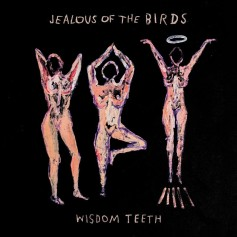 Jealous of the Birds – Wisdom Teeth EP