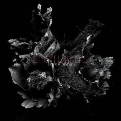 Spotlights – Love & Decay