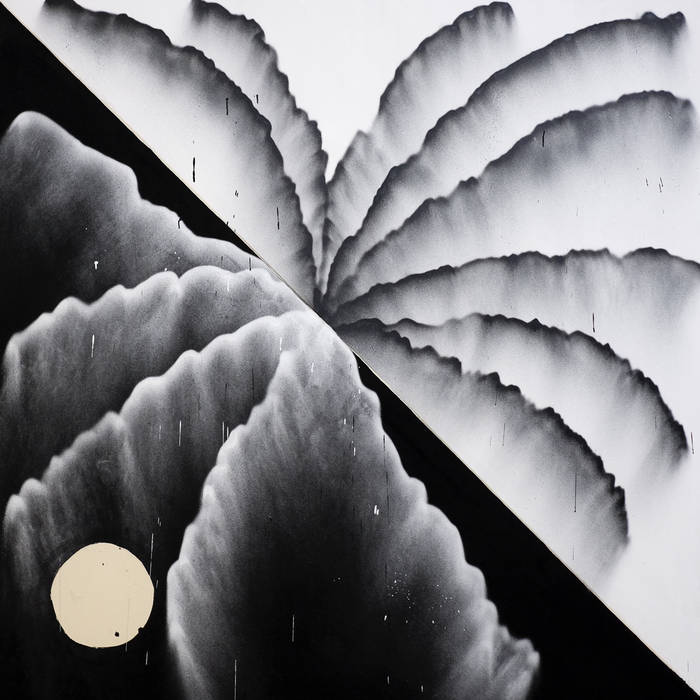 "Shlohmo – ""Looking at Plants"""