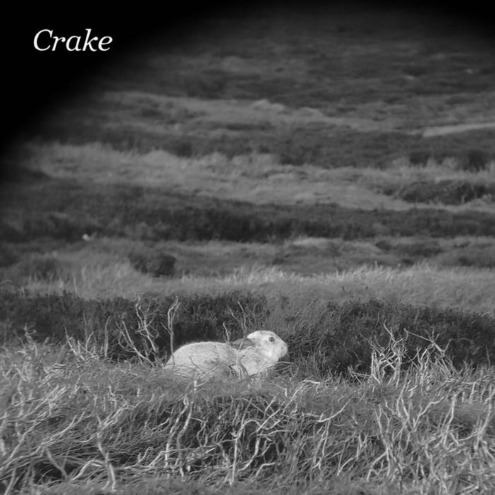 "Crake – ""Enough Salt (For All Dogs)"""