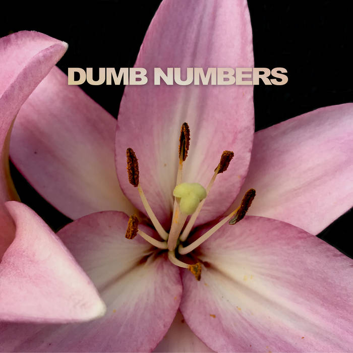 "Dumb Numbers – ""The Longest Goodbye"", ""Looking Forlorn In All The Wrong Places"""